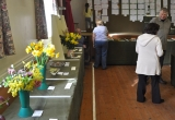 Brighstone Horticultural Society Spring Show