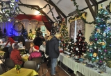 2014 BRIGHSTONE CHRISTMAS TREE FESTIVAL AT THE WILBERFORCE HALL.