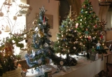 Mottistone Church Trees _ Brighstone Christmas Tree Festival