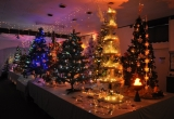Social Club Grotto - Picture by Paul Bradley