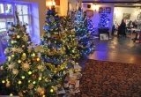 Three Bishops Tree Display - Picture by Paul Bradley
