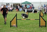 The Dog Display team entertains the crowds.