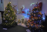 Tableau and Trees in Brighstone Social Club