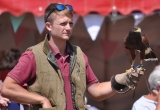 FALCONERY DISPLAY IS LIMITED DUE TO THE HEAT!