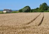 Limerstone - across the fields to Yafford by Paul Bradley