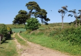 Brighstone, path to the Downs by Paul Bradley