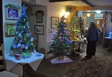 Trees displayed in the Three Bishops PH in Brighstone