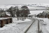 Broad Lane, Brighstone