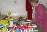 Brighstone Horticultural Society Spring Show in April 2011 – Pictures by Sue Chorley